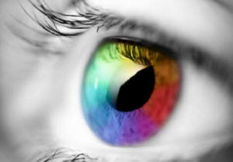 META-Vision Training - META-Health Academy